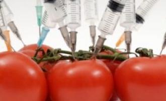 Neminovna cijena integracija :WTO i EU pritišću BiH i Srbiju da prihvate GMO